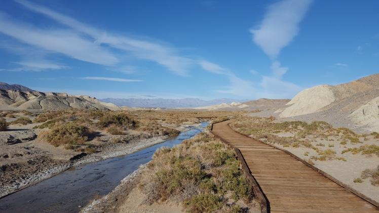 boardwalk-hike